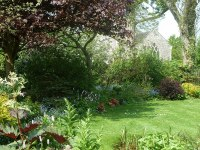 valerie-lindsell-artist-studio-garden-suffolk-01