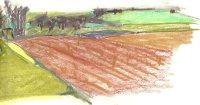 valerie-lindsell-cuckoo-hill